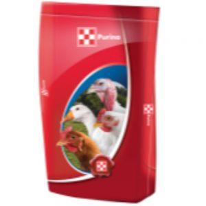 Găini ouătoare - Conține vitamine și minerale