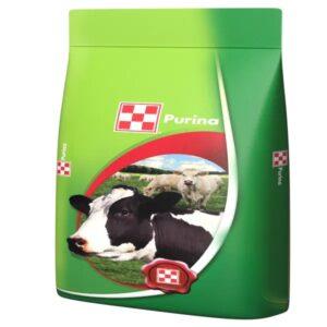 Purina - pentru vaci de lactatie